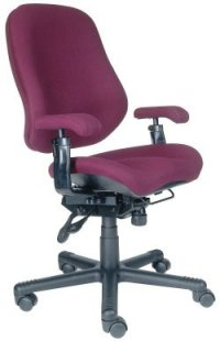 BodyBilt Intensive Use chairs