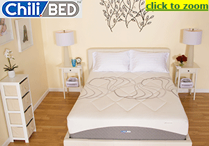 Coolest Sleep Possible - ChiliBed Temperature Controlled Memory Foam Beds