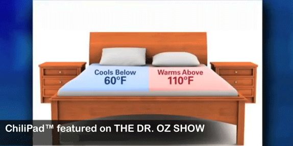 chilipad mattress pad as seen on dr oz - Heated Mattress Pad King