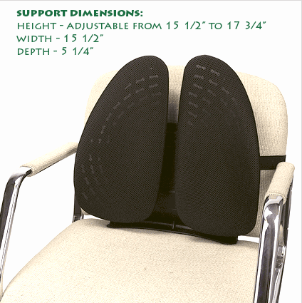 Best Lumbar Back Support While Sitting